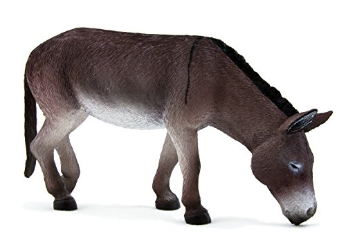 Donkey Grazing by Mojo
