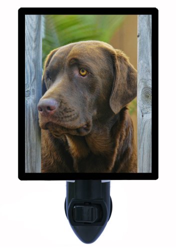 Dog Night Light - Chocolate Lab - Labrador Retriever - LED NIGHT LIGHT