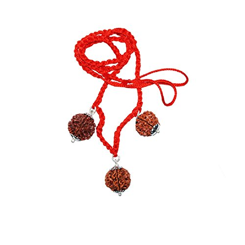 rudraksha-combination-for-career-3712-mukhi-java-certified