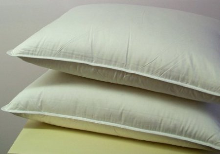 Goose Down Alternative Pillows - 1000 Thread Count Egyptian Cotton , Soft, Queen Size, Set of 2