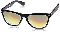 Evana Wayfarer Sunglasses (Black,2B-Brn)