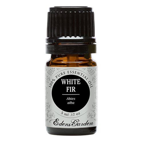 White Fir 100% Pure Therapeutic Grade Essential Oil by Edens Garden- 5 ml