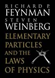 img - for Elementary Particles and the Laws of Physics: The 1986 Dirac Memorial Lectures book / textbook / text book