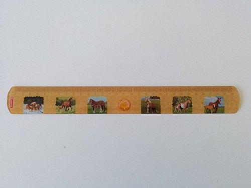 Baier & Schneider Lineal (Büro, Schule) 30cm Flexi Fans of Earth, PVC, 30 cm, Motiv:Pferde