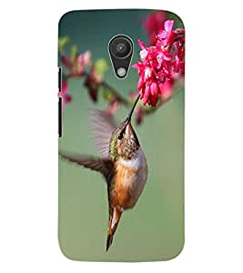 ColourCraft Beautiful Bird Design Back Case Cover for MOTOROLA MOTO G2