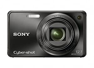 Sony Cyber-shot DSC-W290 12.1 MP Digital Camera with 5x Optical Zoom and Super Steady Shot Image Stabilization (Black)