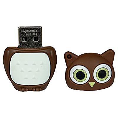 Pen Drive Brown Owl Cartoon Character Shape 16 GB USB 2.0 Pen Drive ZT14034