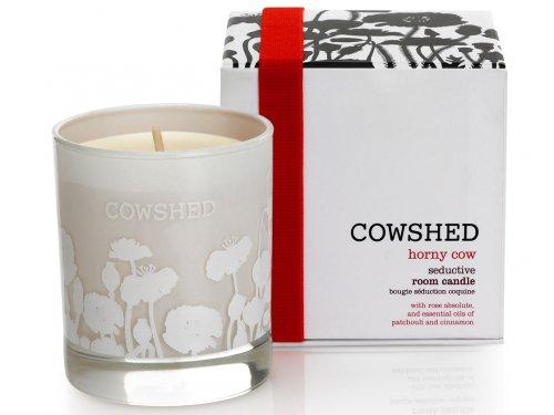 candela Cowshed