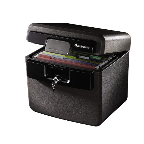 sentrysafe-hd4100cg-fire-safe-waterproof-file