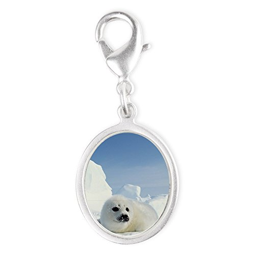 Silver Oval Charm Harp Seal (Wet Seal Bracelet compare prices)