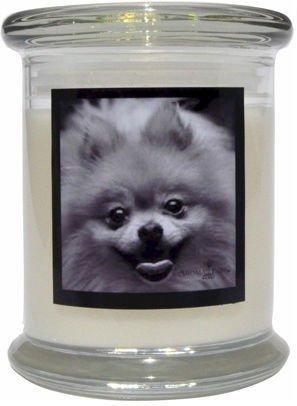 Aroma Paws 323 Breed Candle 12 Oz. Jar - Pomeranian