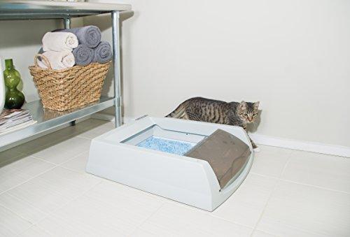 petsafe scoopfree liti re auto nettoyante pour chat. Black Bedroom Furniture Sets. Home Design Ideas
