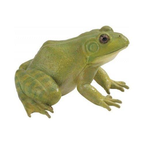 Safari Incredible Creaturesi: Bullfrog