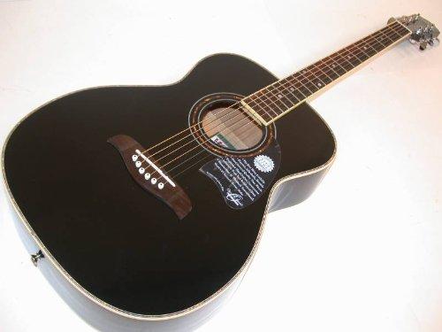 dating washburn guitars Tønder
