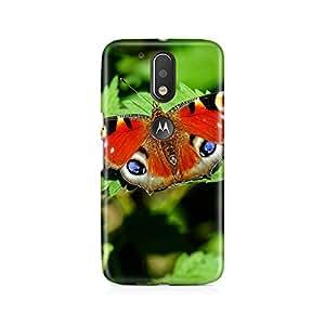 Motivatebox-Moto G4/G4 plus cover-Butterfly colour full Polycarbonate 3D Hard case protective back cover. Premium Quality designer Printed 3D Matte finish hard case back cover.