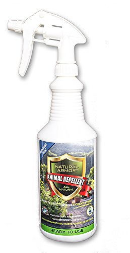 natural-armor-animal-repellent-quart-32-ounce-peppermint-scent-ready-to-use-shake-go-a-deterrent-spr