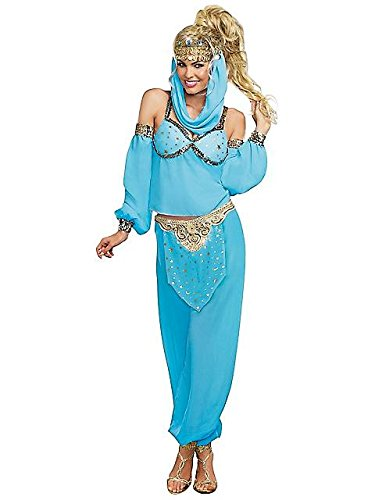 Dreamgirl Women's Genie In A Bottle Costume, Blue, Medium