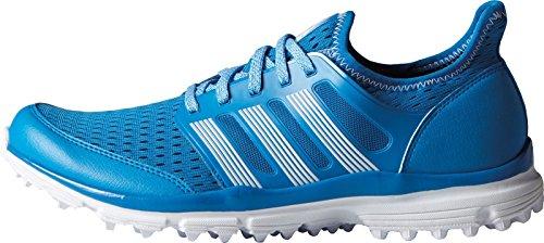 adidas Men's Climacool Golf Spikeless, Shock Blue S16/FTWR White/FTWR White, 13 M US