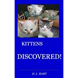 KITTENS DISCOVERED