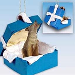 Coyote Gift Box Blue Ornament by Conversation Concepts