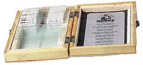 "Konus ""The World Of A Drop Of Water"" Educational Microscope Slide Set"