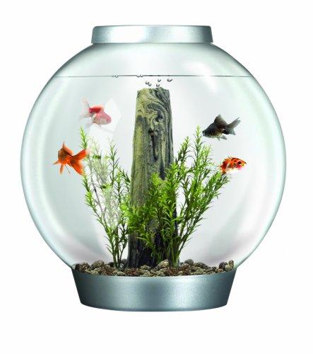 SUP Aquarium