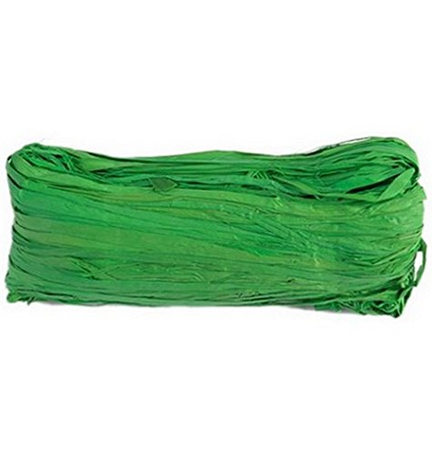 Véritable raphia vert