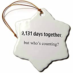 3dRose orn_112212_1 9, 131 Days Together But Who\'s Counting Happy 25th Anniversary Snowflake Porcelain Ornament, 3-Inch