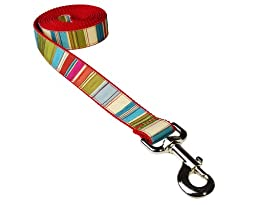 Sassy Dog Wear 6-Feet Red/Multi Stripe Dog Leash, Medium