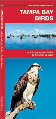 Tampa Bay Birds: A Folding Pocket Guide to Familiar Species (Pocket Naturalist Guide Series)
