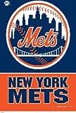 New York Mets MLB 28 x 40 Vertical Flag