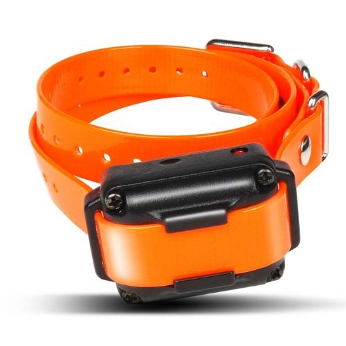 Dogtra Iq Plus Additional Receiver Orange Strap
