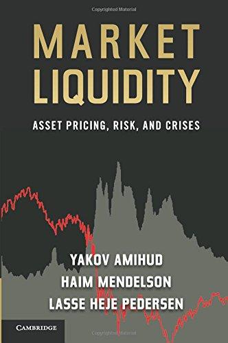 Market Liquidity Paperback
