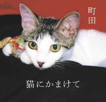 猫にかまけて (講談社文庫)