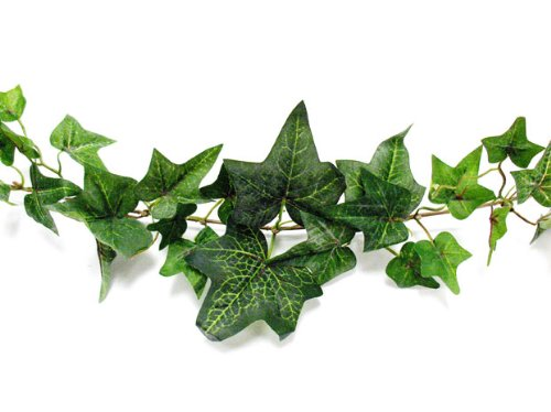 Darice MC-1975 Flocked Ivy Garland, 6-Feet