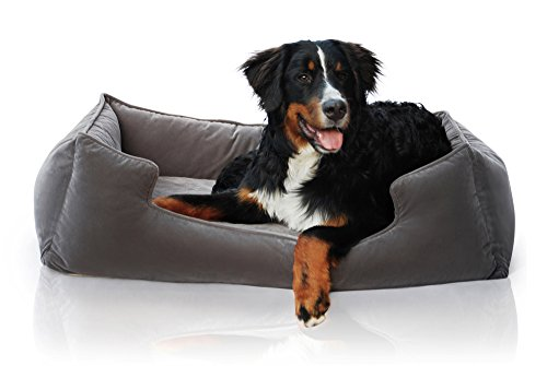 Petsbao-Premium-Orthopedic-Dog-Bed-Lounge-with-Solid-Memory-Foam-Waterproof-Liner-Washable-Removable-Cover-Superior-Comfort-to-Ease-Pain-of-Arthritis-Hip-Dysplasia