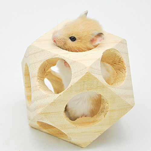 Niteangel Wooden Interactive Toy Ball for Small Animals, Chew toy for Hamsters, Guinea pigs and Rabbits 41Ns6i1cywL