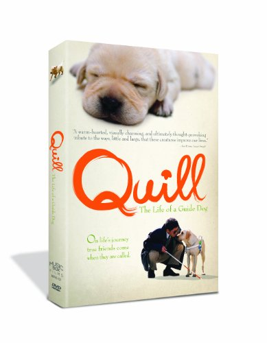 Cover art for  Quill: The Life of a Guide Dog