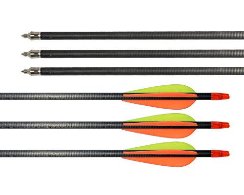 12Pcs-3-Vanes-Fletched-Adult-Carbon-Arrows-with-Replaceable-Tips-and-Black-Adjustable-Arrow-Tube-Quiver