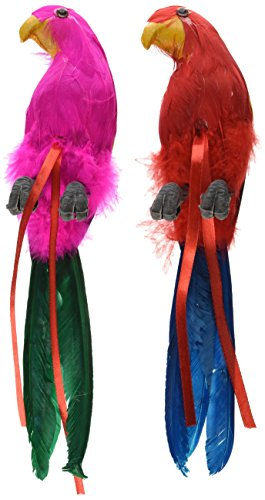 Beistle 50179-12 Feathered Parrots, 12-Inch (Parrot Party Supplies compare prices)