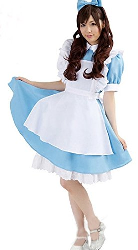 Sweet Maidservant Outfit Lolita Maid Coffee Shop Cafe Waitress Costume Dress WSJ16M