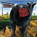 Blink 182 Dude Ranch