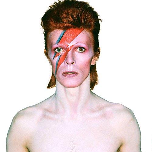 David Bowie 003 Waterproof Plastic Poster Poster di Plastica Impermeabile - Anti-Fade - Possono utilizzare su Outdoor/Giardino/Bagno