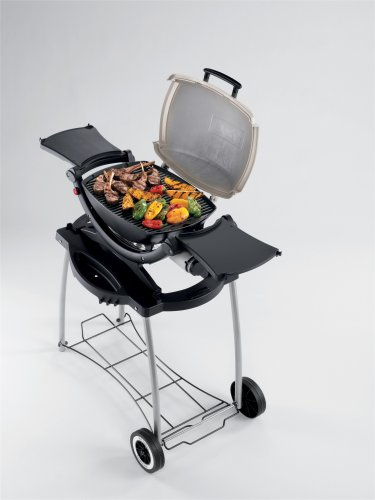 barbeque grill weber 516002 q 120 gas grill. Black Bedroom Furniture Sets. Home Design Ideas