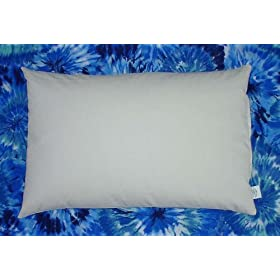 Organic Buckwheat Pillow - Travel/ Child Size (11