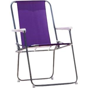 Essentialz Folding Picnic Chair Purple With
