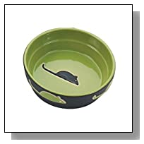 Ethical Pet Products (Spot) CSO6898 Fresco Cat Dish, 5-Inch, Green