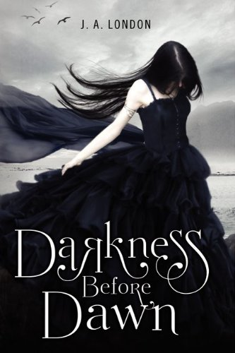 Cover of Darkness Before Dawn