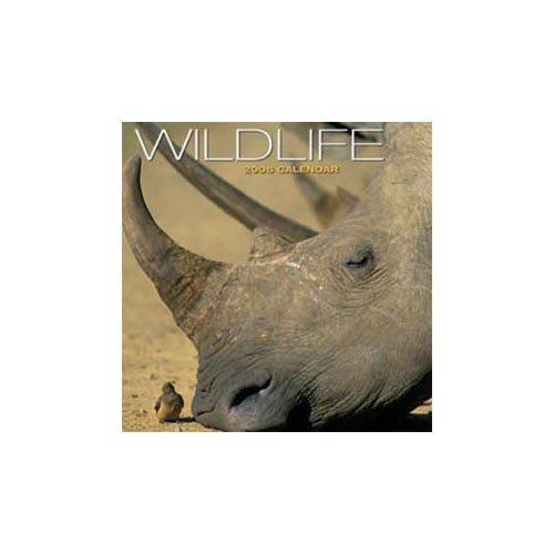 Kalender 2006 - Kalender Wildlife - Kalender 2006