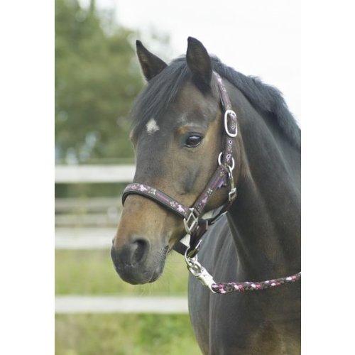 Halfter-Set PFERDEFREUNDE, Pony, braun